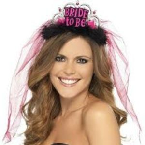 Bride To Be Tiara With Fuchsia Veil And Black Feathers
